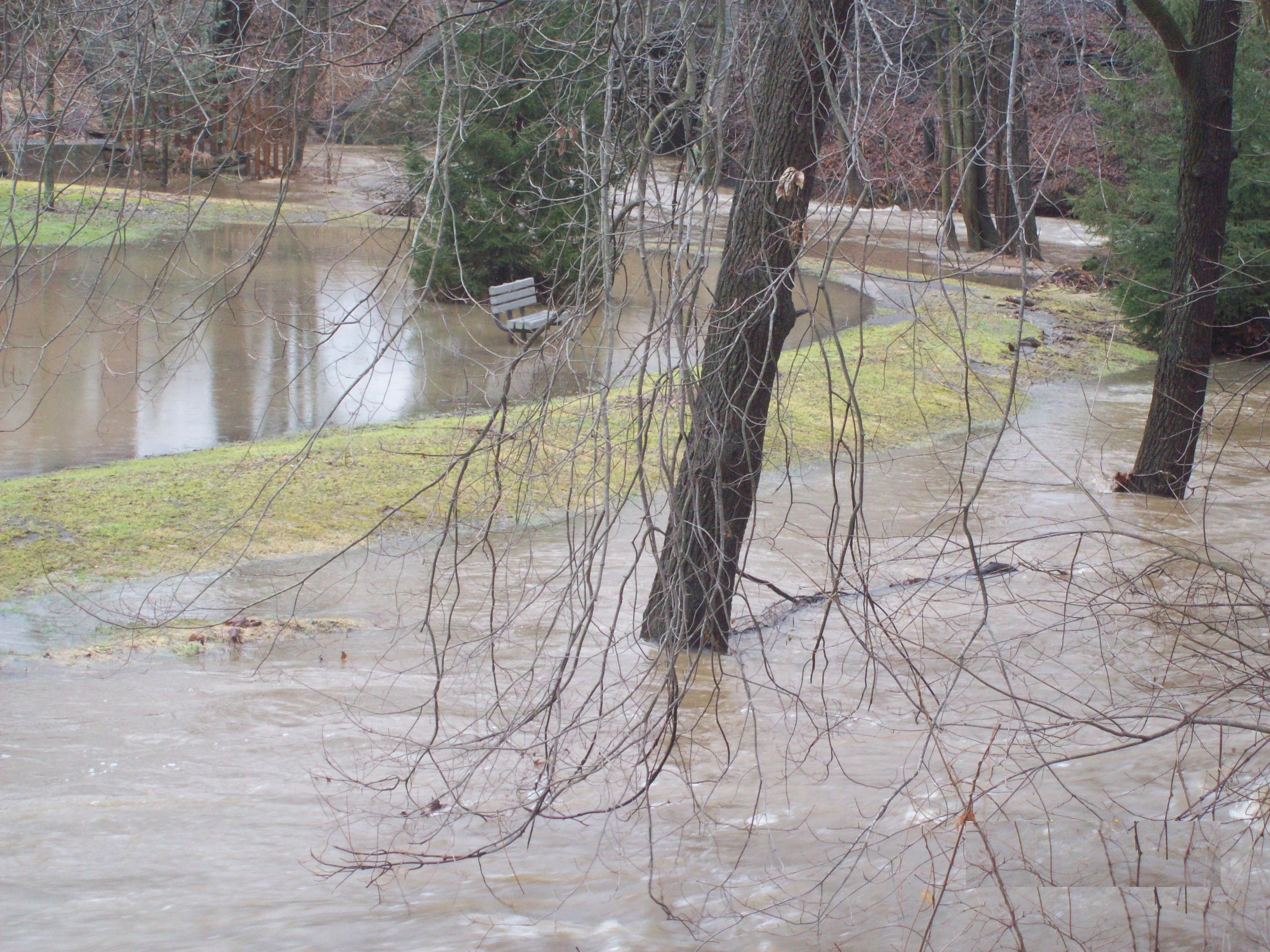 Flood insurance study : village of Black Creek, Wisconsin ...
